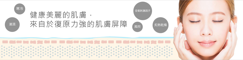 barrier-banner.jpg